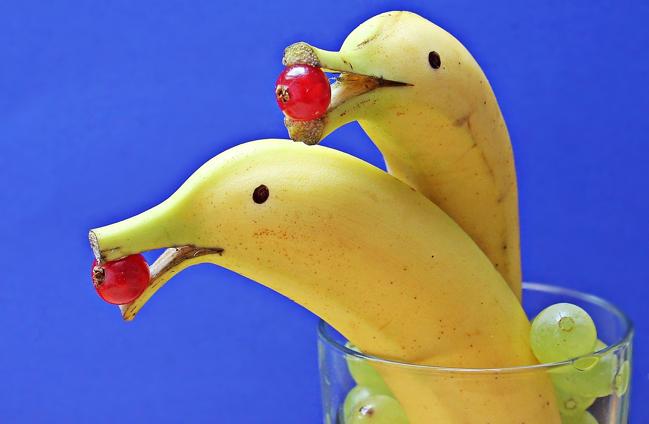 delfin-bananas-1737836_1280