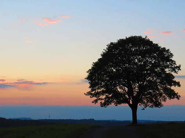 sunset-2690086_640