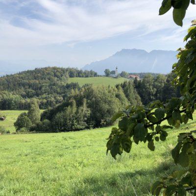 Ausflugstipp der Woche: Bienenweg / Berchtesgadener Land